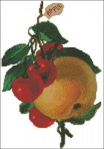 Викторианский натюрморт с яблоком - схема для вышивки крестом