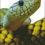 "<!--:en-->Photorealistic green snake cross stitch design<!--:--><!--:ru-->Схема для вышивки крестом ""Фото-змея""<!--:-->"