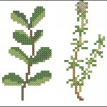 "<!--:en-->Herbs cross stitch chart<!--:--><!--:ru-->Схема для вышивки ""Пряные травы""<!--:-->"