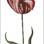 "<!--:en-->Vintage Tulip<!--:--><!--:ru-->Схема для вышивки ""Винтажный тюльпан""<!--:-->"