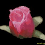 <!--:en-->Pink rose on black cross stitch chart<!--:--><!--:ru-->Роза на черном фоне<!--:-->