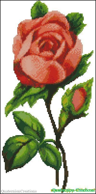 Роза на черном фоне схемы вышивка крестом