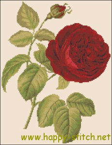 Dark red rose free cross stitch pattern by happy-stitch.net