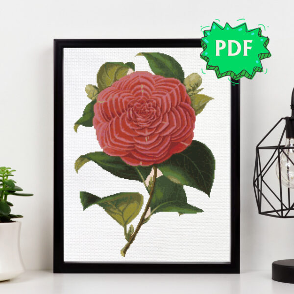 Vintage Camellia cross stitch pattern - flower embroidery - botanical illustration cross stitching