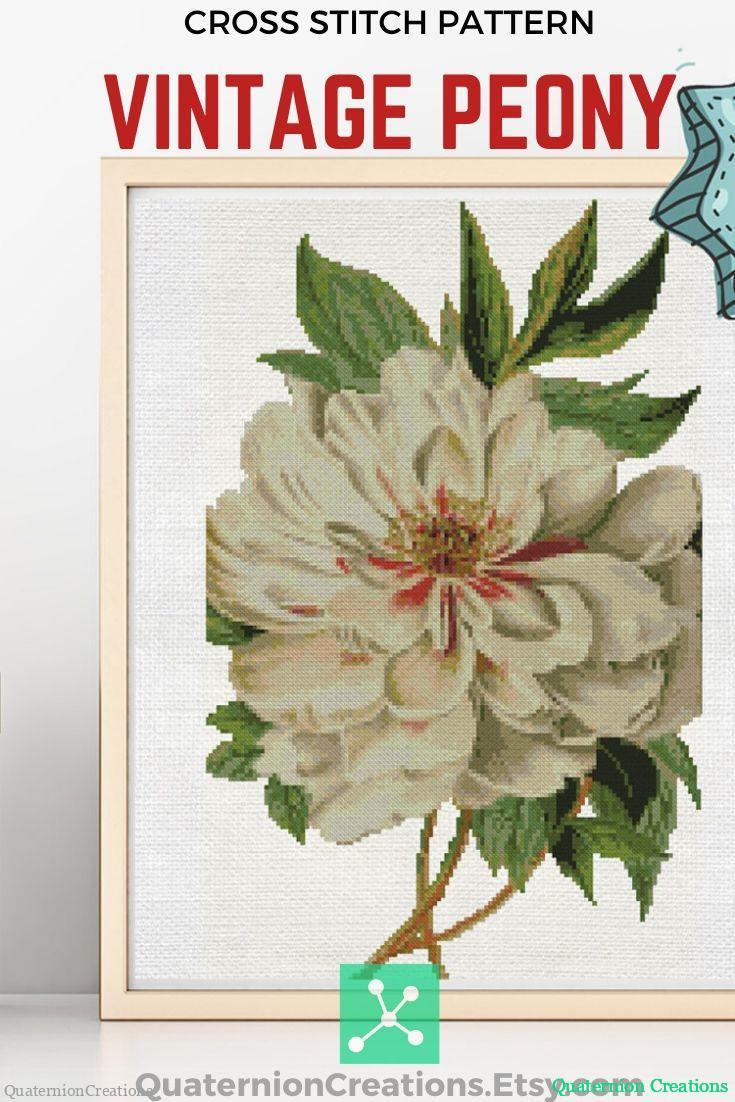 Vintage botanical white peony cross stitch pattern. Instant download