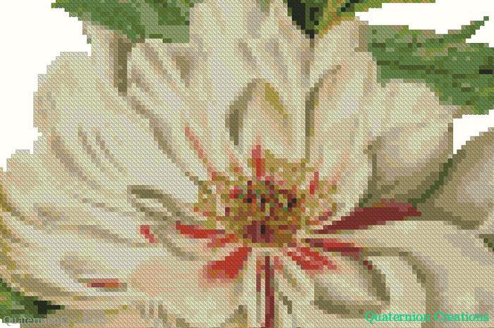 Vintage botanical white peony cross stitch pattern