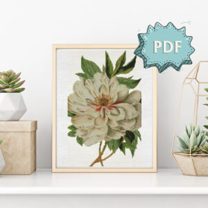 Vintage white peony cross stitch pattern